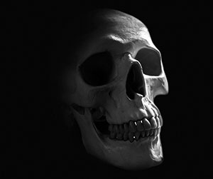 skull_cropped